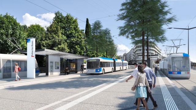 BHNS et tram à Prélaz